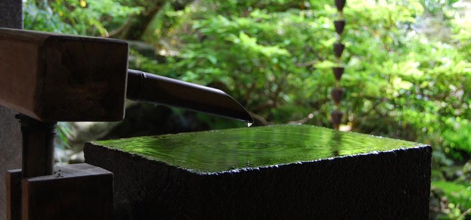 shino garden